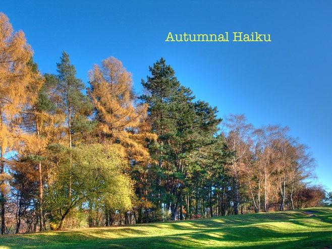 Haiku - Autumn Writing Resource for KS2 and 3