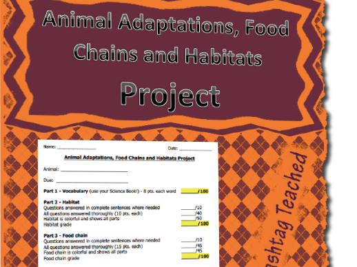 Animal Adaptations, Food Chains and Habitats Project