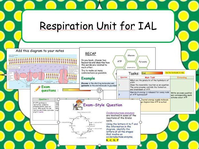 IAL Respiration Unit