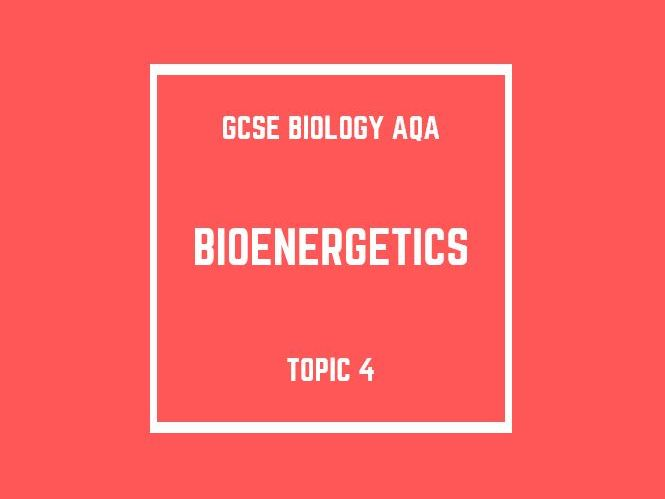 GCSE Biology AQA Topic 4: Bioenergetics