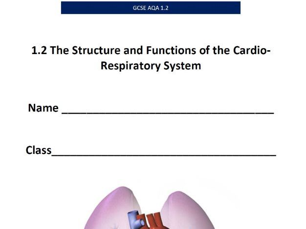 AQA GCSE PE - 1.2. The Cardio-respiratory System - Pupil Booklet/Answer Booklet
