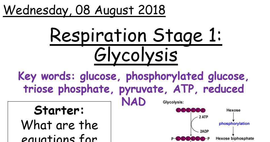 AQA A level Biology - Glycolysis