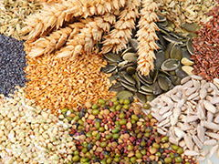 Food Prep and Nutrition Cereals Commodity Knowledge organisers