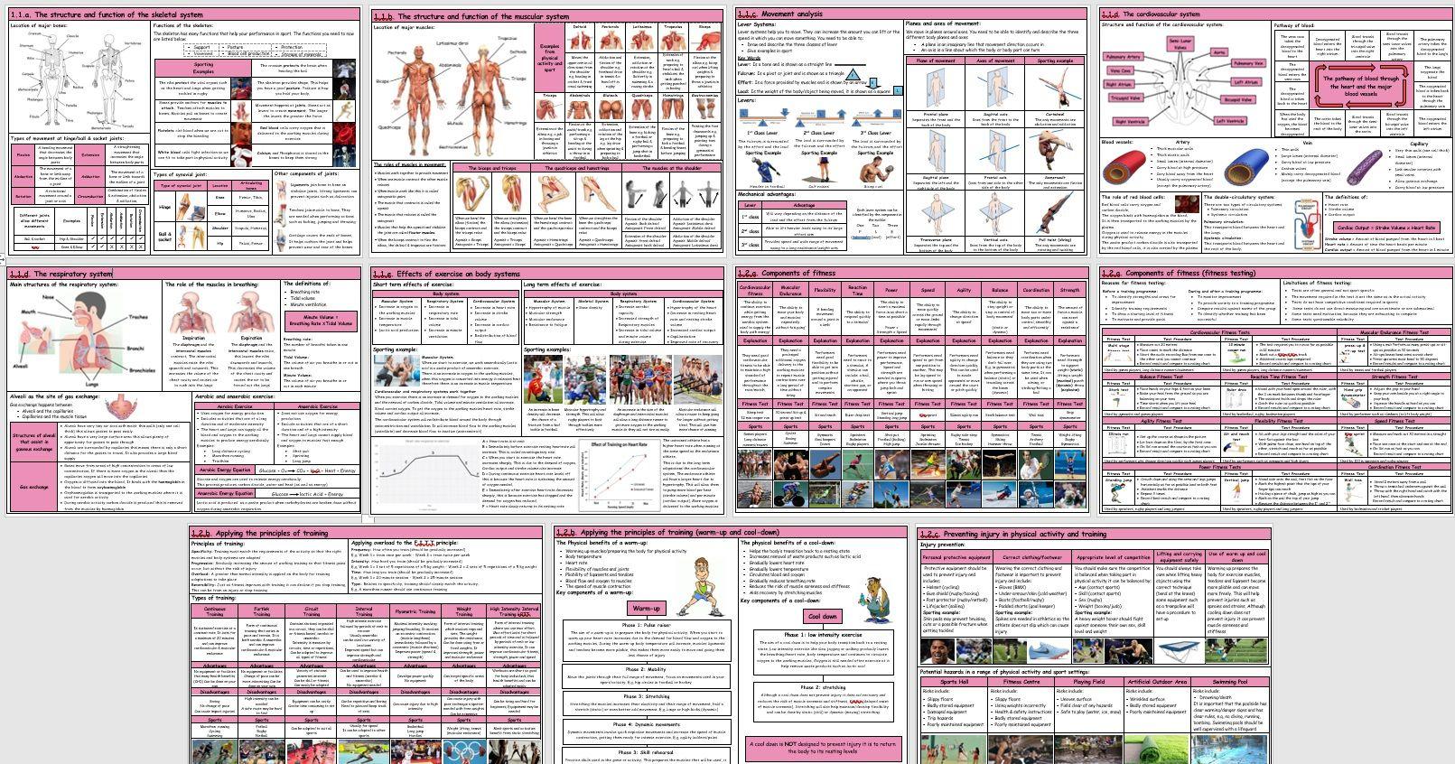 GCSE PE – OCR (9-1) – Complete Component 01 - Knowledge Organisers / Revision Mats (Bundle)