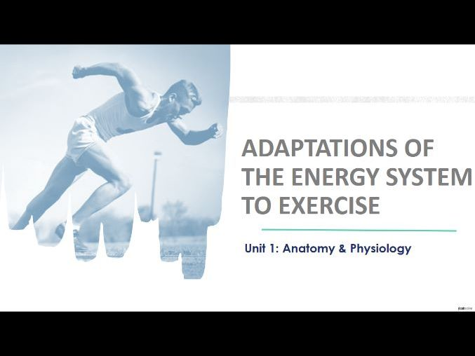 Adaptations of the energy system to exercise