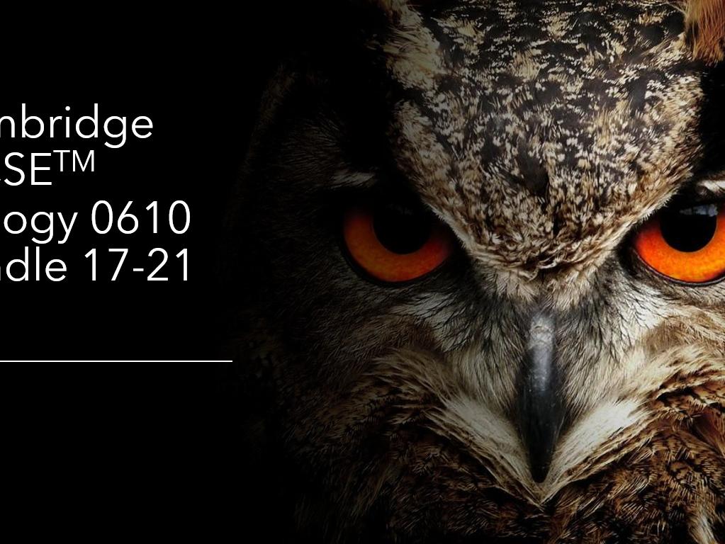 Cambridge IGCSE Biology 0610, Topics 17-21