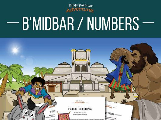 B'midbar | Numbers: Torah Portion Activity Book