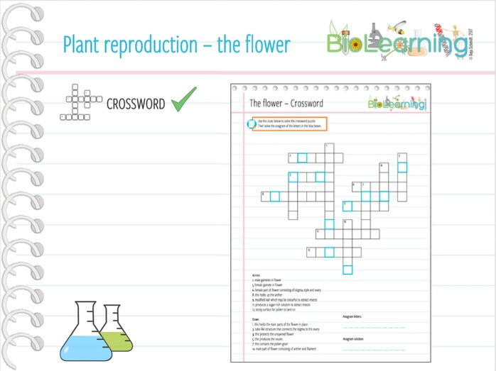 Plant reproduction the flower crossword ks3ks4 by cover image ccuart Gallery