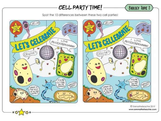 Cells and organelles activity