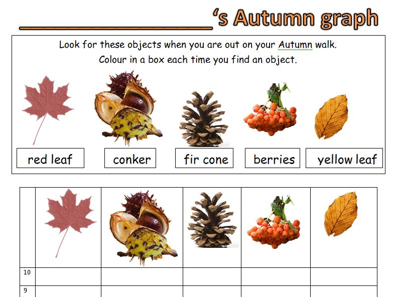 KS1 Autumn Maths data handling graph.