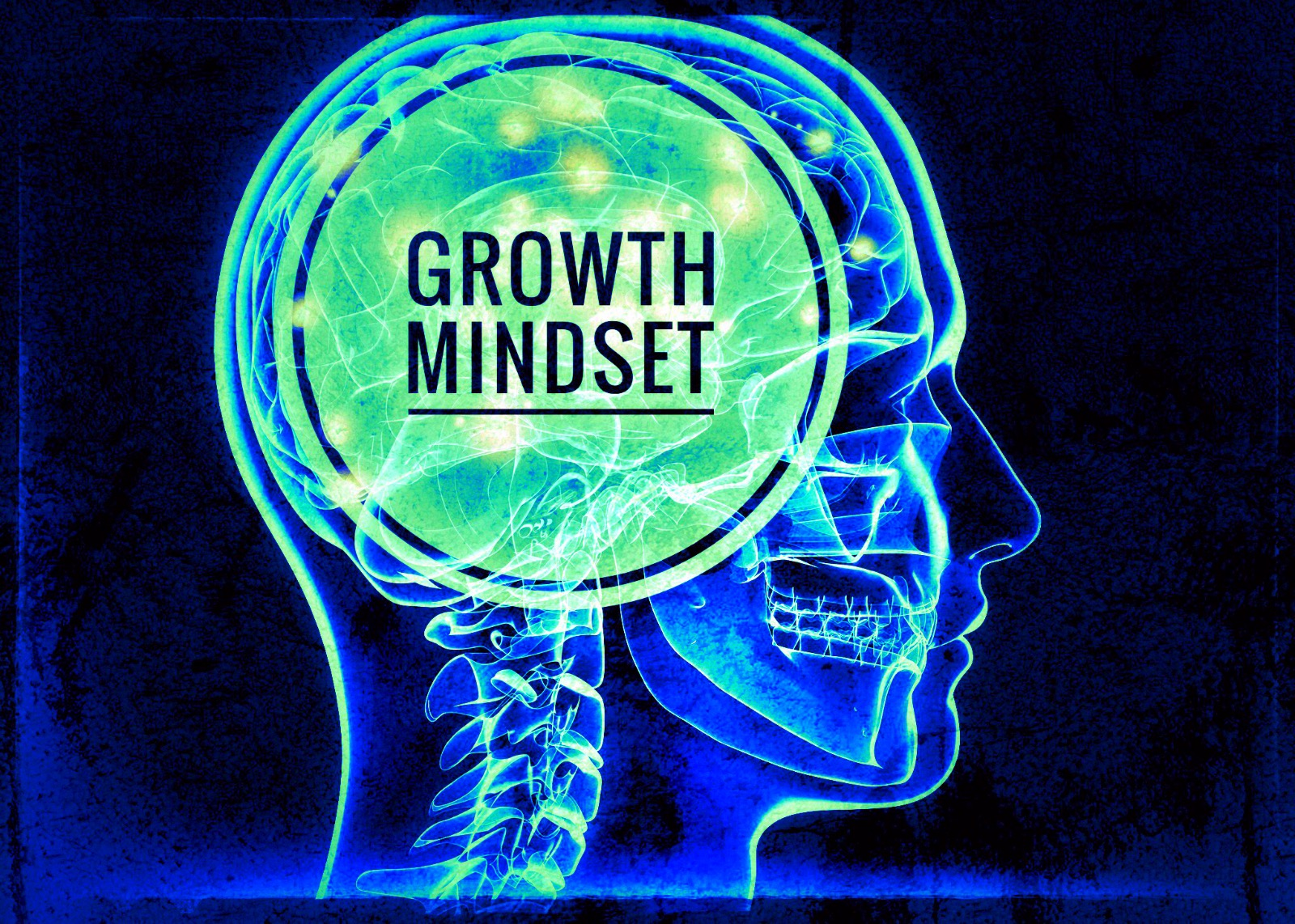 Thinking Skills and Growth Mindset Resources