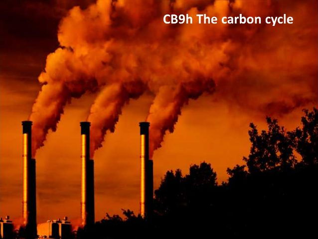 CB9h The Carbon cycle