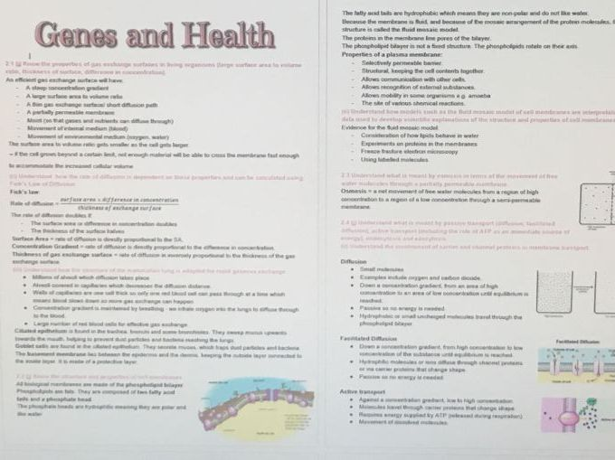 Edexcel SNAB Biology A level module 2: Genes and health revision notes