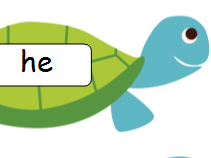 Phase 3 Tricky Words on Tortoises
