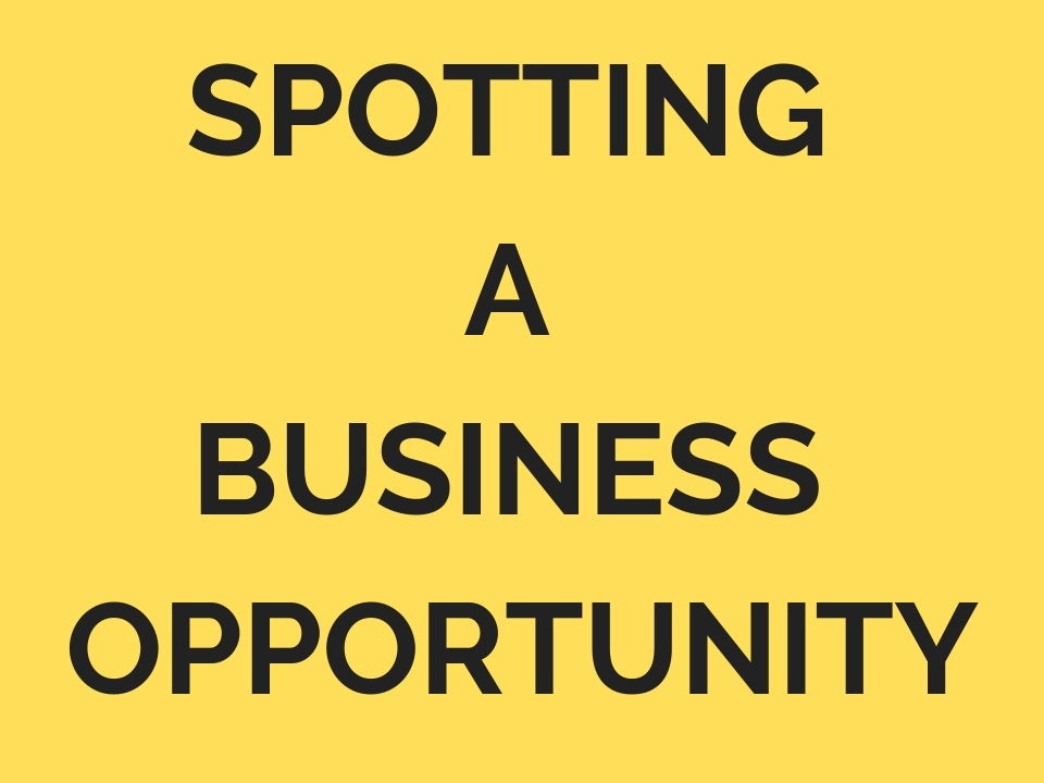 1.2 Spotting a business opportunity