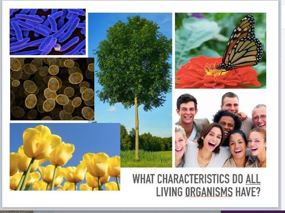 CIE 0654 Biology Characteristics of Living Things & Cell Structure Interactive Presentation
