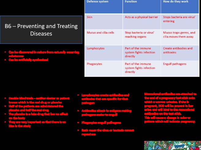 AQA GCSE 9-1 B6 Preventing Disease Revision Mat