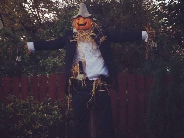 Autumn/Scarecrow Themed Problem Solving Mystery