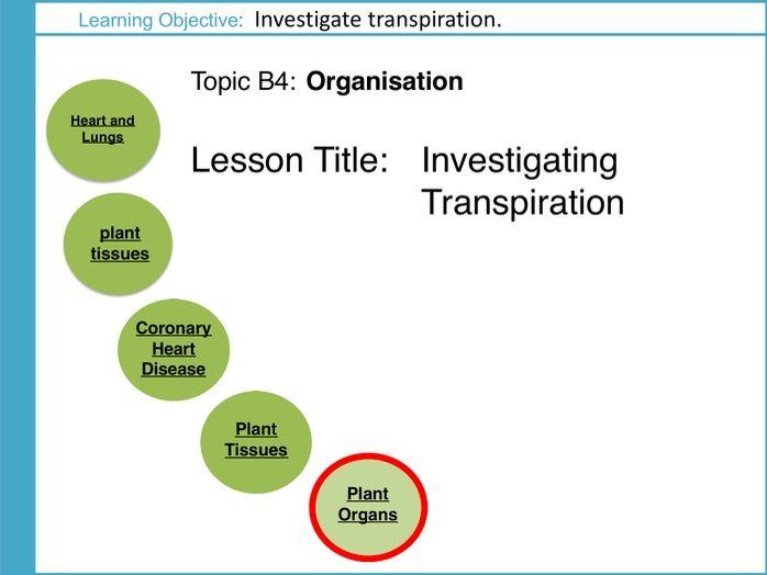 AQA GCSE: B4 Organisation: L6 Investigating Transpiration