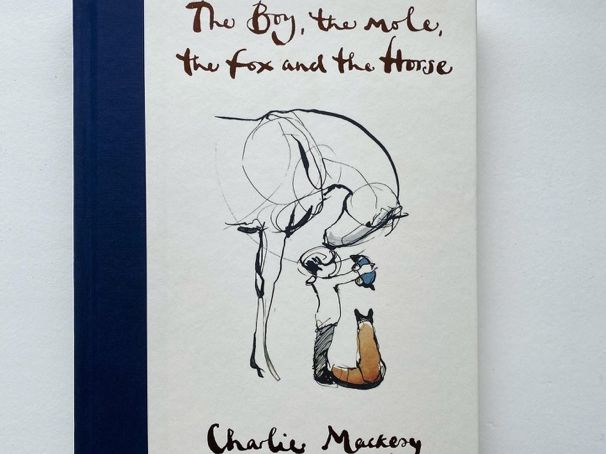 The Boy the Mole the Fox and Horse - HWB and Literacy