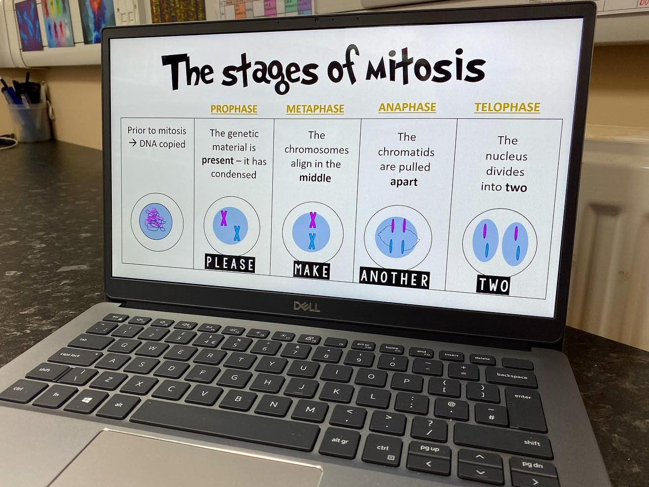 Mitosis overview slide for KS4 *FREE*