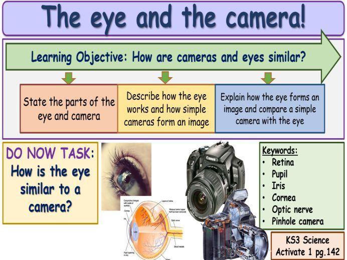 The eye and the camera KS3 Activate Science