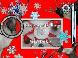 STEAM Festive Reindeer - Biomimicry Challenge