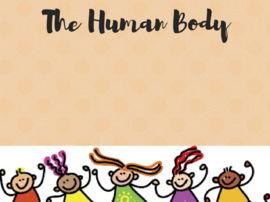 Exploring the Human Body