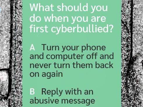 Cyberbullying Quiz (US)