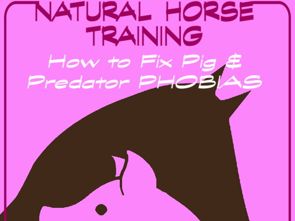 NATURAL HORSE TRAINING > How to Fix Pig & Predator PHOBIAS