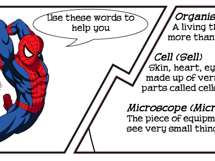 Cells and Diffusion Keywords Literacy Lesson (SEN / Foundation)