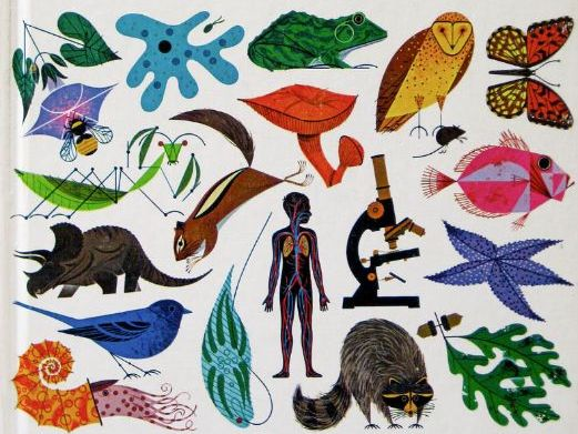GCSE Biology Exemplar Six marker Questions