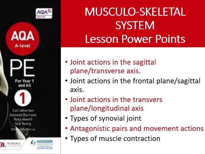 A Level PE (New): Musculo-skeletal System PPT