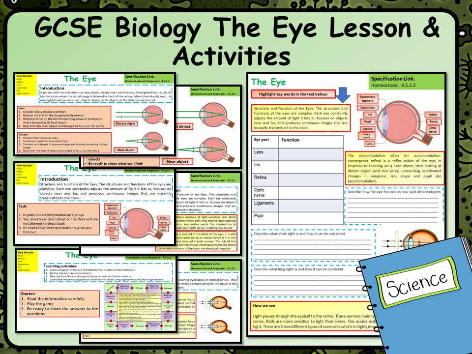 KS4 AQA GCSE Biology (Science) The Eye Lesson & Activities