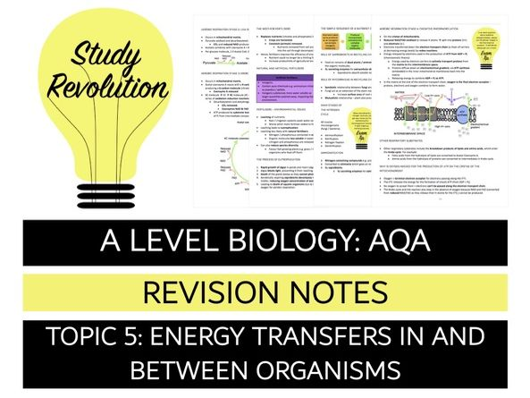 NEW A Level Biology Topic 5 Photosynthesis/respiration/energy&ecosystems/nutrient cycles) Revision