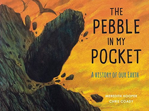 Image result for the pebble in my pocket
