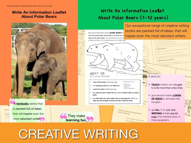 Write An Information Leaflet About Polar Bears (7-13 years)