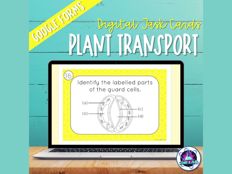 Transport in Plants Digital Task Cards
