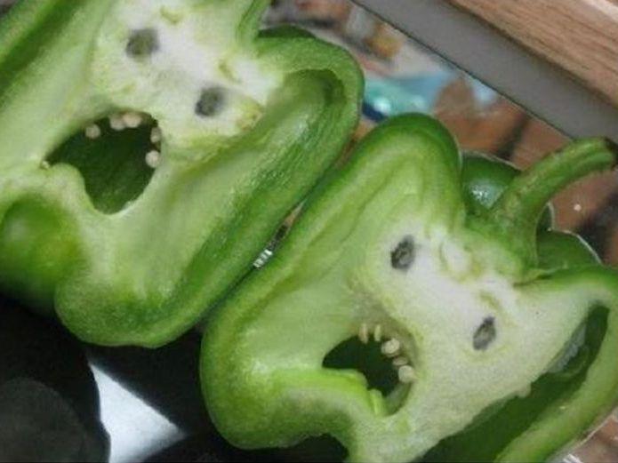 GMO or Organic food?