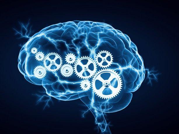 Cognitive Psychology Revision Guide