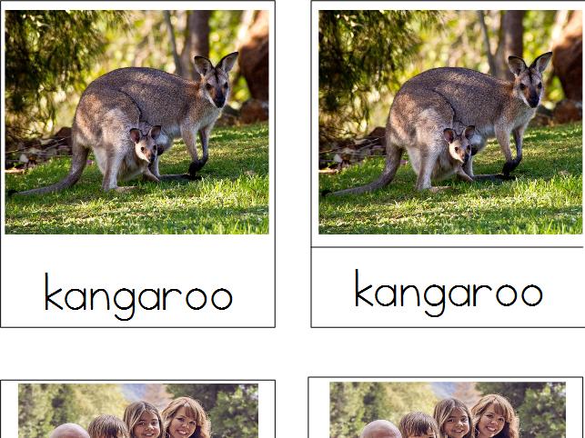 Mammals - Montessori 3-Part Cards