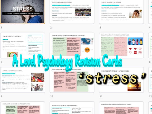 Stress A level psychology revision cards