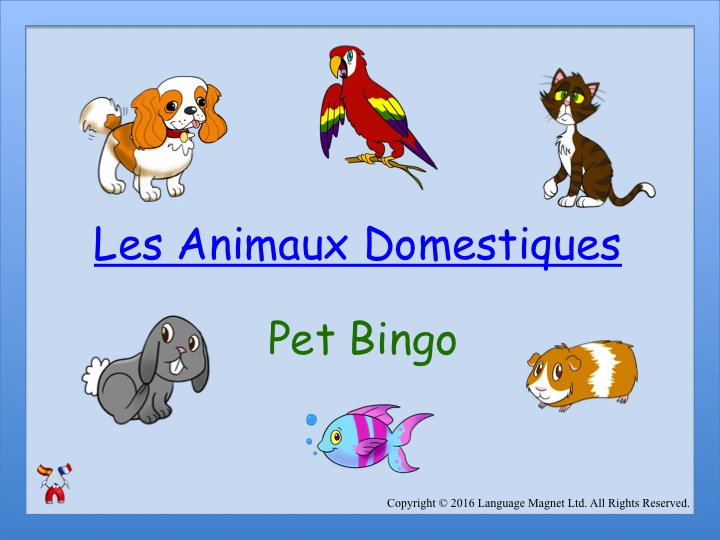 French Pet Bingo Game