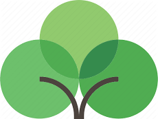 Online Family Tree Project (MYP)