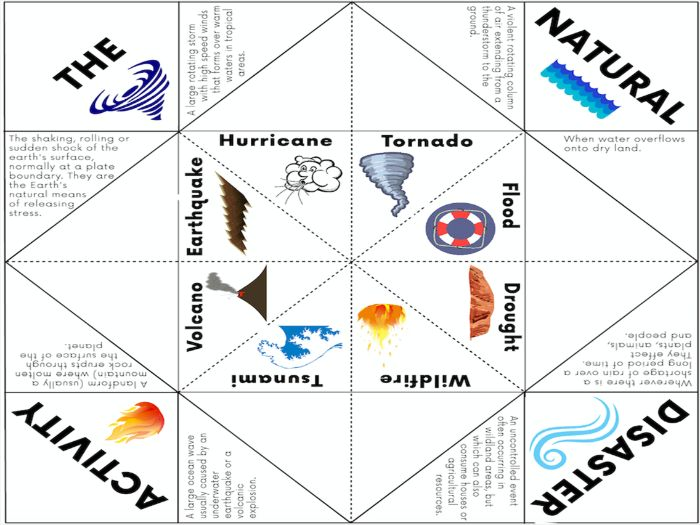 Natural Disaster Activity - Cootie Catcher Game