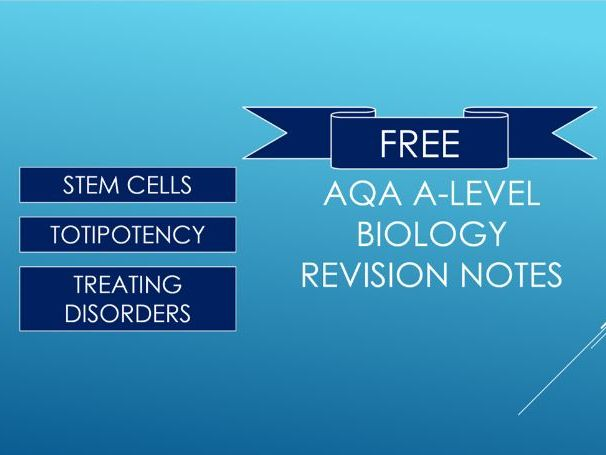 A-level Biology Stem Cells and Totipotency Revision Notes