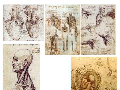 Leonardo da Vinci Research