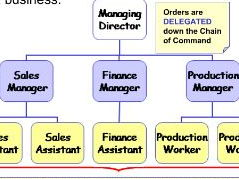 Organisational Structures / Communication