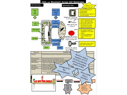 Cells KS4 Fact Sheet for the Revision Phobic!