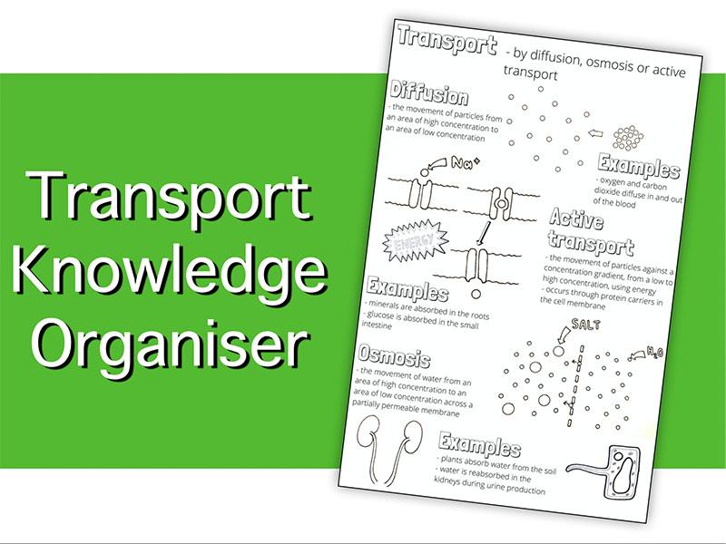 Transport Knowledge Organiser